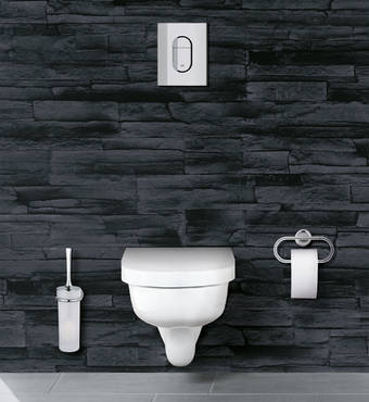 Arena Cosmopolitan WC wall plate